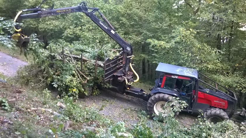 Exploitation forestière Débardage